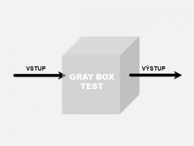 Gray box test