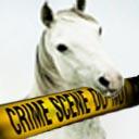 Přečtěte si, jak se najímají muly a vyvádějí peníze z bank – 3. díl