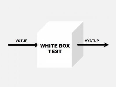 White box test